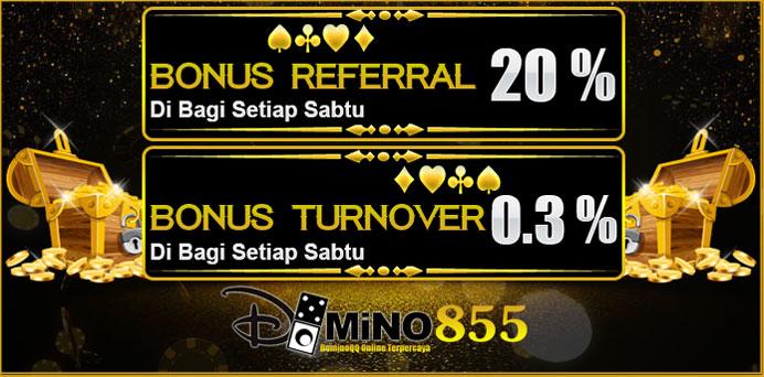 Domino855